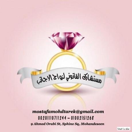 mktbmstshark-alkanon-almstshar-mstf-mhmd-tark-lzoaj-alajanb-fy-msr-big-0